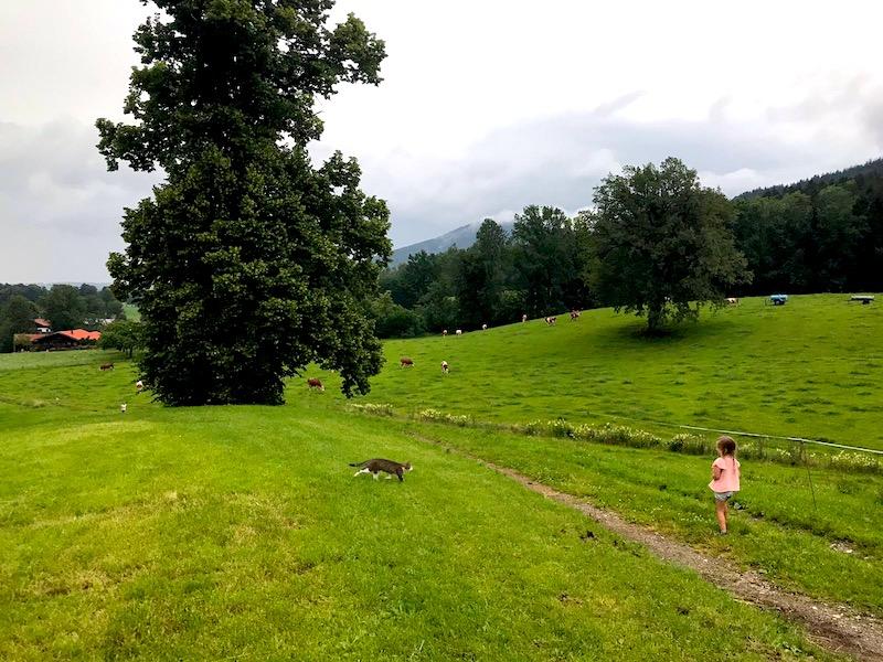 Supermom_Mamablog_Fischbachau_Spaziergang