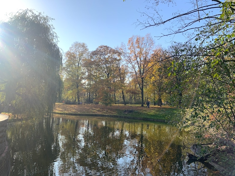 Supermom_Mamablog_Herbstspaziergang
